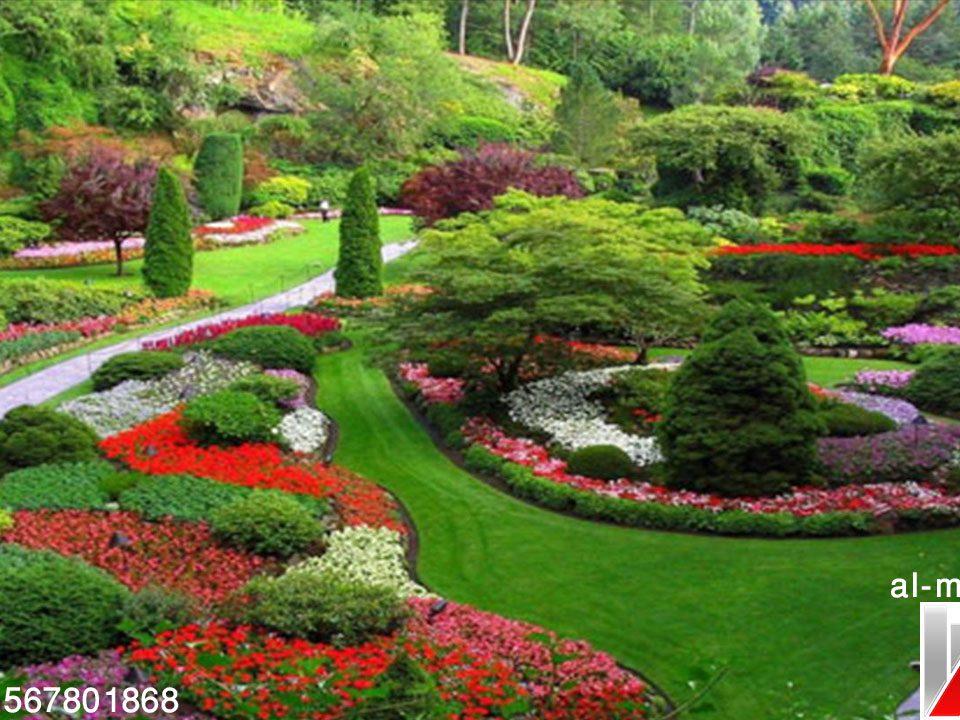 شركة تصميم حدائق خارجية