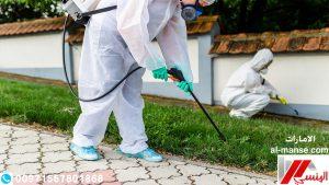 شركة مكافحة حشرات بالامارات